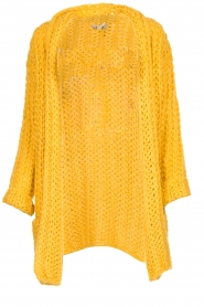 Be Pure |  Chunky knitted cardigan Charly| yellow