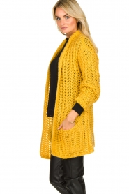 Be Pure |  Chunky knitted cardigan Charly| yellow  | Picture 5