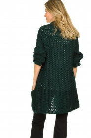 Be Pure |  Chunky knitted cardigan Charly | green  | Picture 5