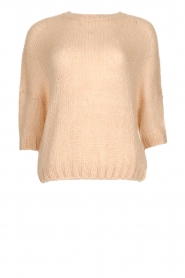 Be Pure |  Sweater Louise | powder pink  | Picture 1