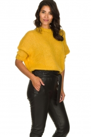 Be Pure | Knitted sweater Babette | yellow  | Picture 4
