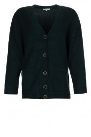 Patrizia Pepe |  Buttoned cardigan Anouk | green  | Picture 1