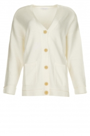 Patrizia Pepe |  Buttoned cardigan Anouk | natural  | Picture 1