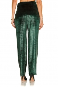 Patrizia Pepe |  Wide velvet pants Mara | green  | Picture 5
