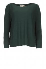 Blaumax |  Lightweight knit Rea | green  | Picture 1