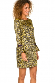 Kocca | Dress with print Ginseng | yellow  | Picture 4