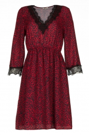 Kocca | Dress with print Besidas | red  | Picture 1