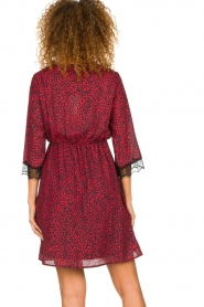 Kocca | Dress with print Besidas | red  | Picture 6