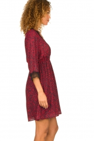 Kocca | Dress with print Besidas | red  | Picture 5