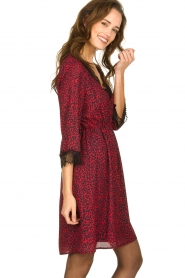 Kocca | Dress with print Besidas | red  | Picture 3