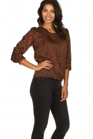 Aaiko |  Top with panther and zebra print Medelin | animal print  | Picture 4