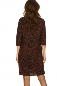 Aaiko |  Dress with panther print Mazaron | rust brown  | Picture 5