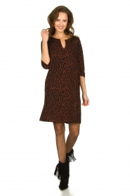 Aaiko |  Dress with panther print Mazaron | rust brown  | Picture 3