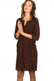 Aaiko |  Dress with panther print Mazaron | rust brown  | Picture 2