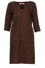 Aaiko |  Dress with panther print Mazaron | rust brown  | Picture 1