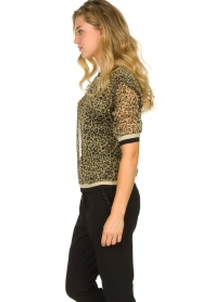 Aaiko |  Leopard print top with lurex Inea | gold  | Picture 4