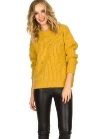Aaiko |  Knitted sweater Trilly | ochre yellow  | Picture 4