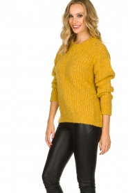 Aaiko |  Knitted sweater Trilly | ochre yellow  | Picture 5
