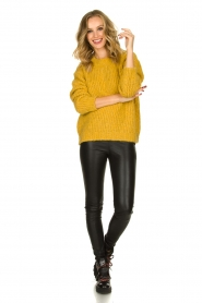 Aaiko |  Knitted sweater Trilly | ochre yellow  | Picture 3
