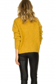 Aaiko |  Knitted sweater Trilly | ochre yellow  | Picture 6