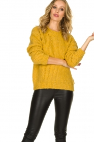 Aaiko |  Knitted sweater Trilly | ochre yellow  | Picture 2