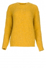 Aaiko |  Knitted sweater Trilly | ochre yellow  | Picture 1