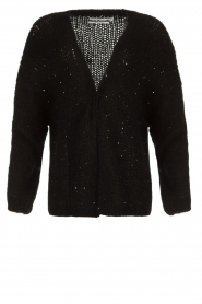 Aaiko |  Knitted cardigan Dylene | black  | Picture 1