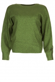 Aaiko |  Glitter sweater Verona | green  | Picture 1
