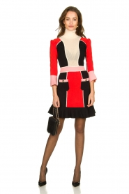 ELISABETTA FRANCHI |  Color block dress Main | multi  | Picture 3