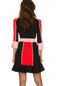 ELISABETTA FRANCHI |  Color block dress Main | multi  | Picture 6