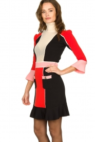 ELISABETTA FRANCHI |  Color block dress Main | multi  | Picture 5