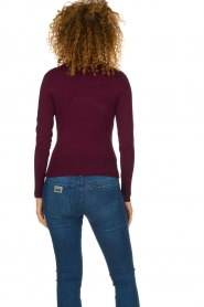 Fracomina | Turtle neck Pascal | burgundy  | Picture 4