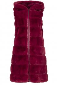 Fracomina | Faux fur waistcoat Miranda | burgundy  | Picture 1