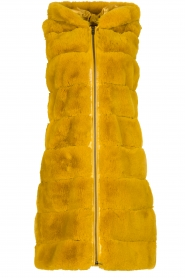 Fracomina | Faux fur waistcoat Miranda | yellow  | Picture 1