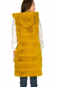 Fracomina | Faux fur waistcoat Miranda | yellow  | Picture 5