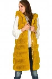 Fracomina | Faux fur waistcoat Miranda | yellow  | Picture 6
