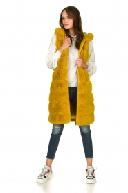Fracomina | Faux fur waistcoat Miranda | yellow  | Picture 3
