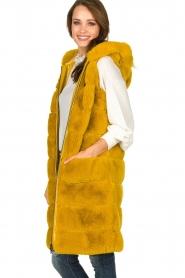 Fracomina | Faux fur waistcoat Miranda | yellow  | Picture 4