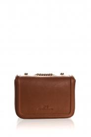 ELISABETTA FRANCHI   Faux leather handbag Riana   camel    Picture 2