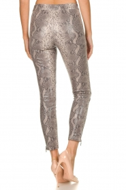 Arma |  Leather pants with snake print Cadiz | animal print  | Picture 5