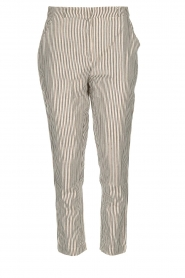 Aaiko |  Striped pants Agra | multi  | Picture 1