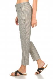 Aaiko |  Striped pants Agra | multi  | Picture 4