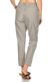 Aaiko |  Striped pants Agra | multi  | Picture 5