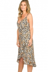 Aaiko |  Leopard printed dress Annika | natural  | Picture 5