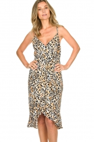 Aaiko |  Leopard printed dress Annika | natural  | Picture 4