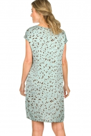 Aaiko |  Printed dress Madrid | blue  | Picture 6