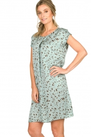 Aaiko |  Printed dress Madrid | blue  | Picture 5