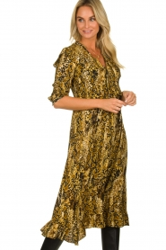 ba&sh |  Snake print midi dress Sahara | animal print  | Picture 2