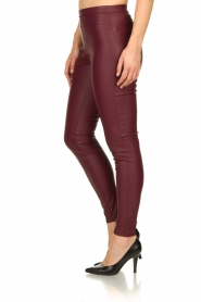Knit-ted | Faux leather leggings Amber | red  | Picture 4