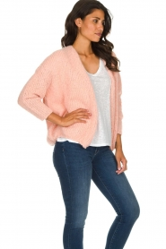 American Vintage |  Heavy knitted cardigan Boolder | pink  | Picture 5